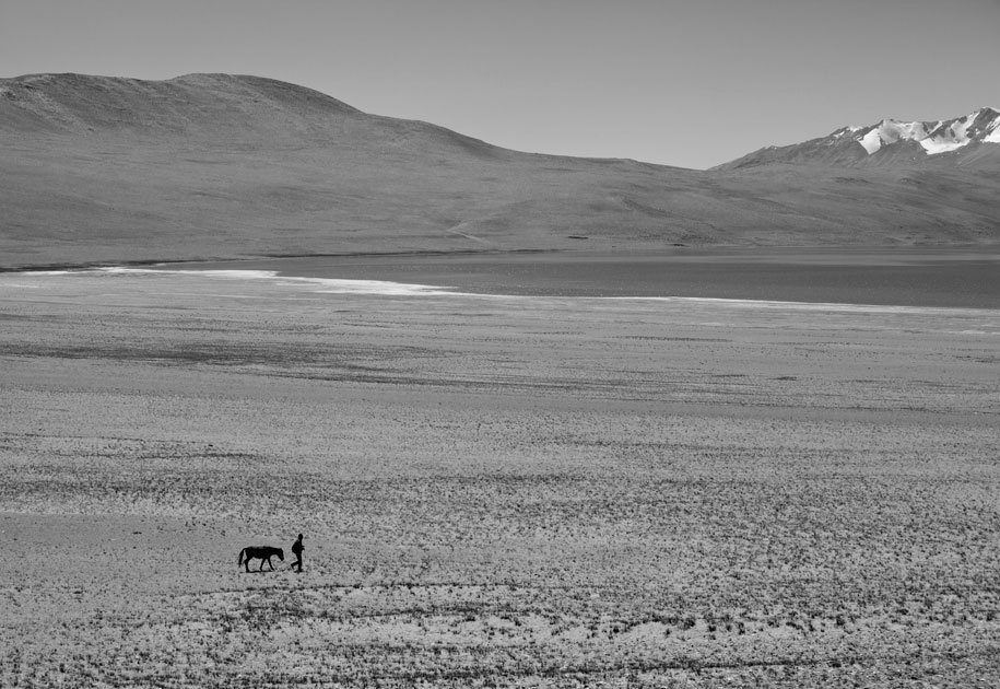 11_landscape.ladakh.manwithhorse.black and white.india.jpg
